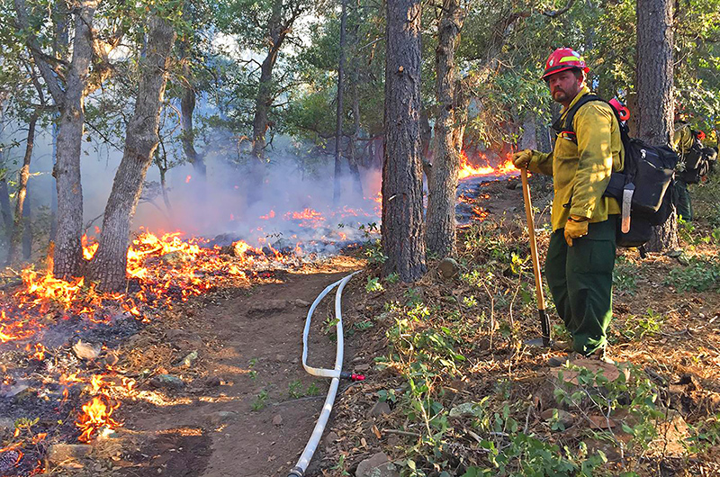 Ad Hoc Committee on Forest & Wildfire Management to Hold Initial Hearing, Will Examine Historical & Current Practices