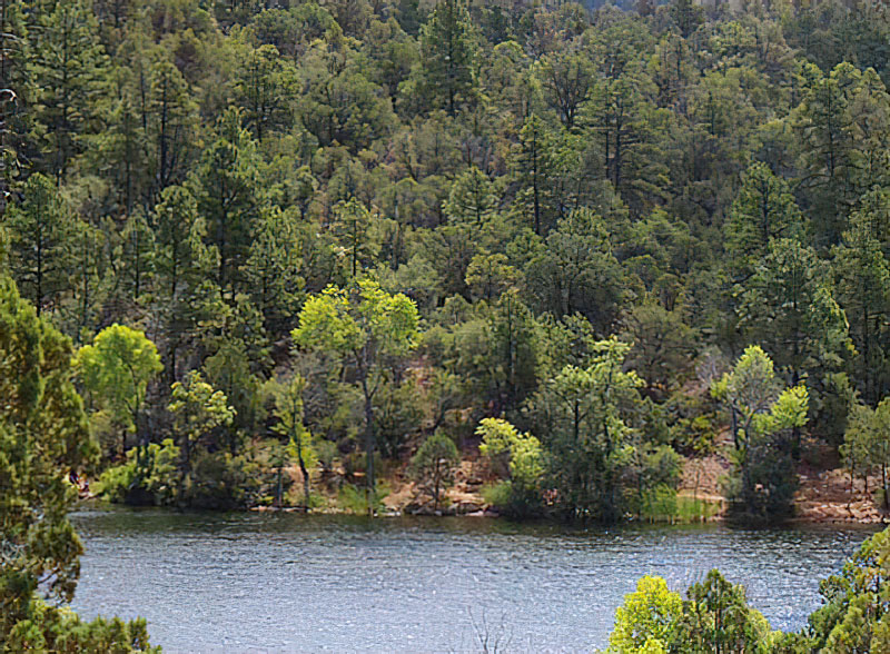Prescott National Forest Waives Day-Use Fees on Saturday, September 25