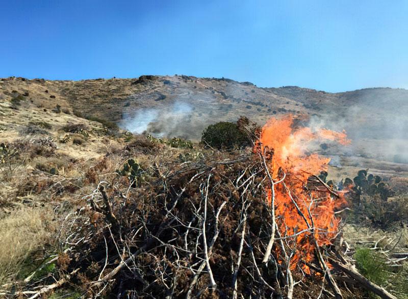 RX Burning on Bradshaw & Verde Districts