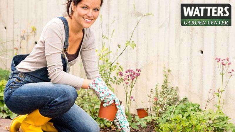 11 Fall Tips for Better Gardens